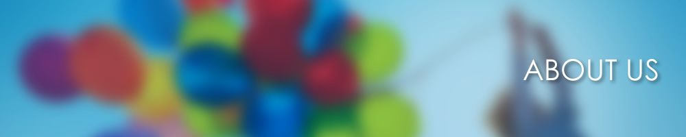 banner_about